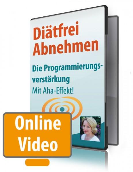 Onlinevideo-4- Die Verstärkung der Programmierung